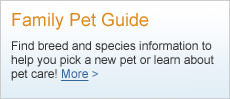 Family Pet Guide